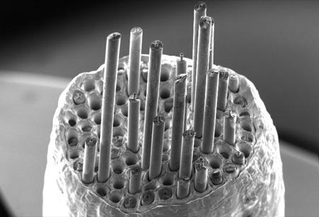 Silicon Carbide - Copper Metal Matrix Composite